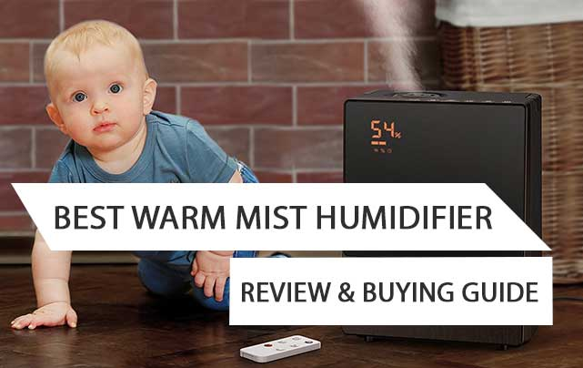 Best Warm Mist Humidifier Review